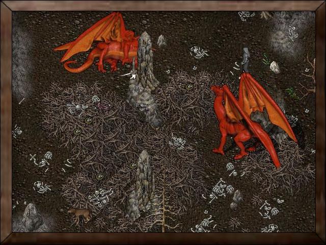 Dragon Roost.jpg