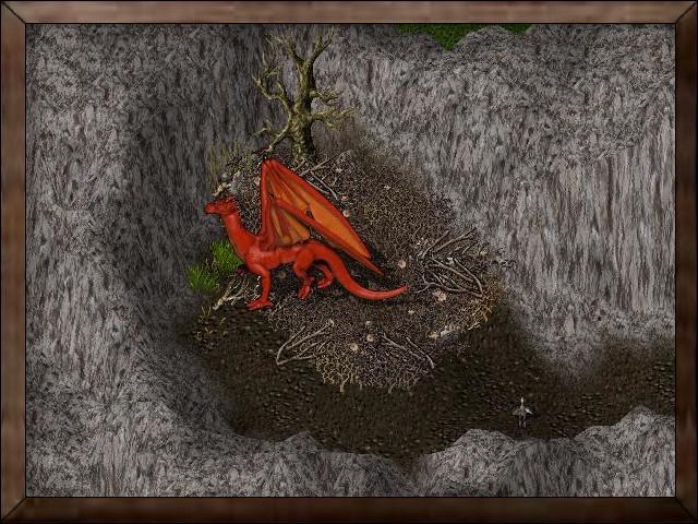 Drake Nests.jpg