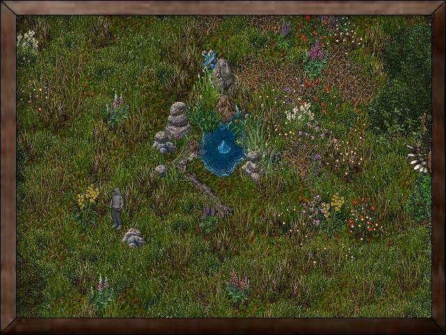 Grasslands.jpg