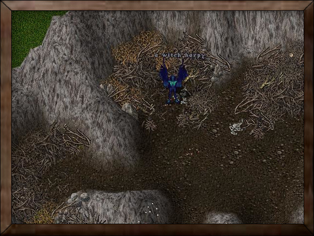Harpy Nests.jpg
