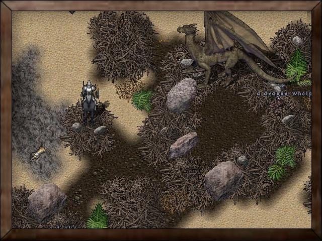 Island Dragon Roost.jpg