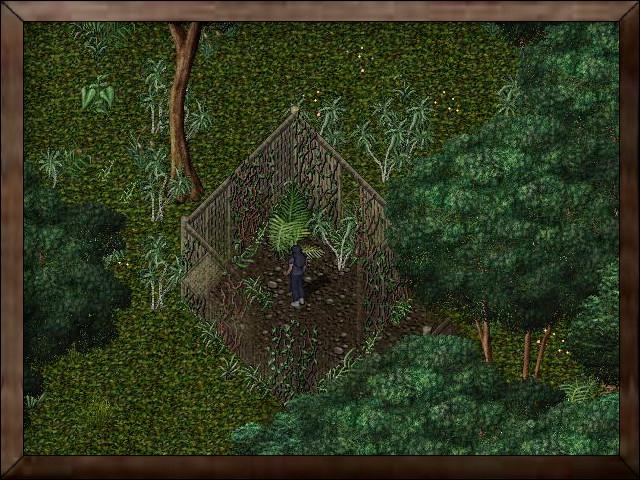 Jungle Hut.jpg